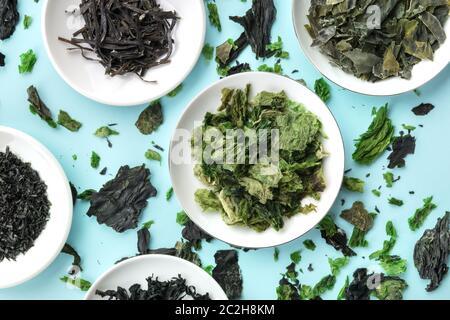 Algas secas, verduras de mar, Top Shot sobre un fondo verde azulado