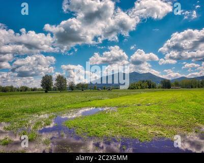 DE - ALTA BAVIERA: Paisaje Loisach Moor cerca de Bichl