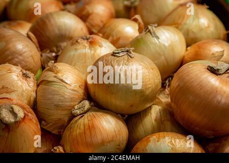Una fotografía de marco completo de cebollas para la venta en un puesto de mercado