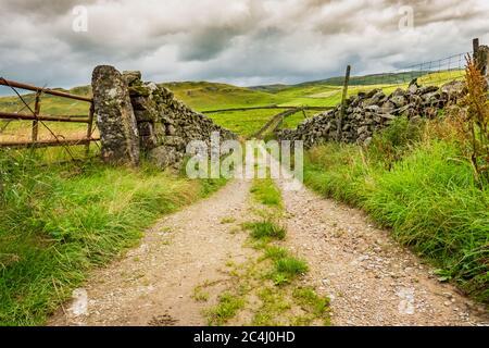 Vista de bajo nivel de una vieja pista de tierra que conduce a un valle en los valles de Yorkshire. A cada lado de la carretera hay muros de piedra viejos y secos. Foto de stock
