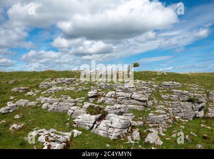 Cavan Burren Park, Geopark, Blacklion, Irlanda,