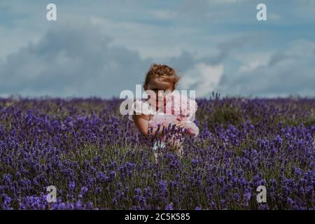 Niña en Lavender Field, Reino Unido
