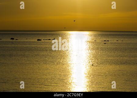 Puesta de sol en la costa del mar Báltico en verano, Estonia.