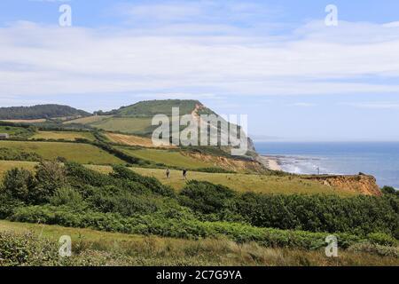 Golden Cap, South West Coast Path, Dorset, Inglaterra, Gran Bretaña, Reino Unido, Reino Unido, Europa