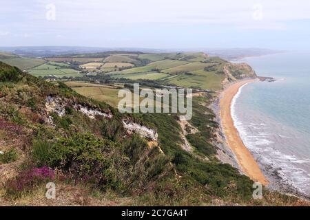 Vista al este desde Golden Cap, South West Coast Path, Dorset, Inglaterra, Gran Bretaña, Reino Unido, Reino Unido, Europa