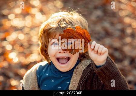 Niño pequeño en el parque de otoño. El niño cubre los ojos con una hoja de arce amarilla en el parque otoñal. Niños caminando en el parque de otoño. Lindo chico jugando con