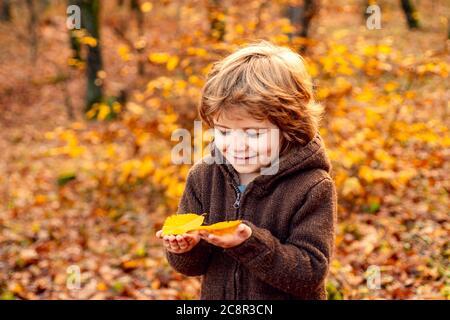 Retrato de otoño de lindo niño. Felices niños jugando y sueña al aire libre en otoño.
