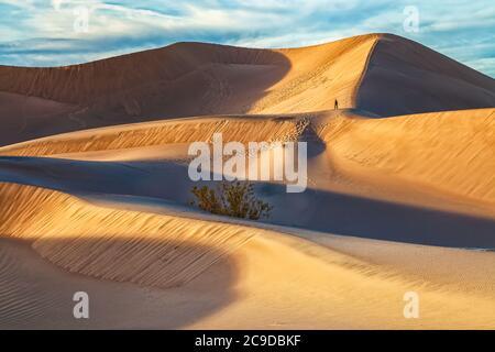 Solitaria hiker en Mesquite Sand Dunes en el Parque Nacional del Valle de la muerte, California, Estados Unidos, por la noche.
