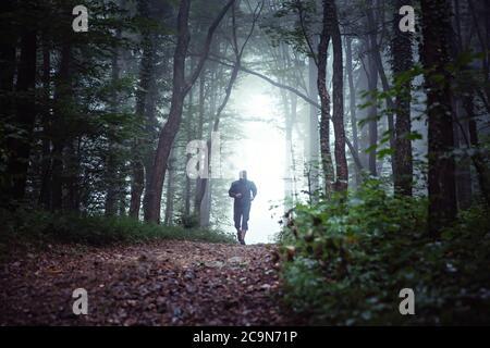 Paisaje forestal Misty, con corredor masculino, sendero corriendo en la distancia. Foto de stock