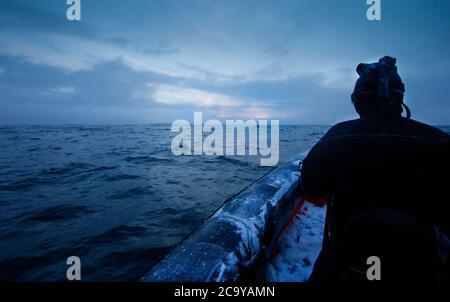 Expedición turística en busca de orcas en Andenes, Isla Andoya, Vesteralen, Noruega, Escandinavia, Europa
