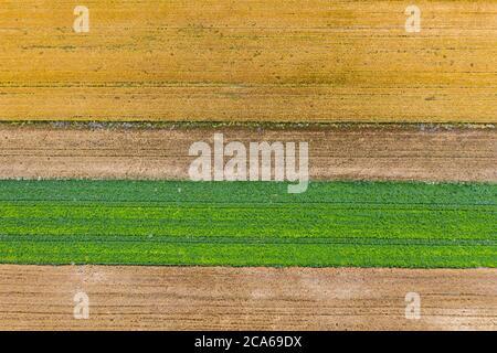 Vista aérea de los campos naturales con plantas verdes, amarillas y marrones Foto de stock