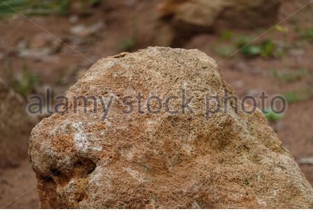 Una roca marrón en una foto de alta calidad Foto de stock
