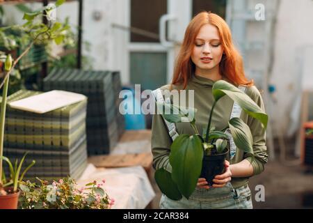 Concepto de jardinería en casa. Joven mujer de pelo rojo con planta en invernadero.