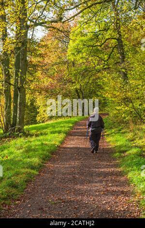 Pensionista caminando con postes en un camino