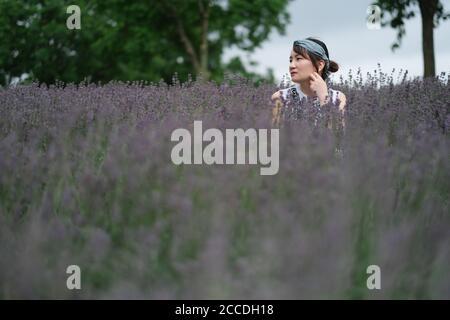 Larga sesión de una hermosa mujer asiática en el arbusto de lavanda. Cara lateral mirando hacia fuera. Primer plano borroso