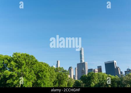 El rascacielos de Manhattan está detrás de árboles verdes frescos en el centro Parque