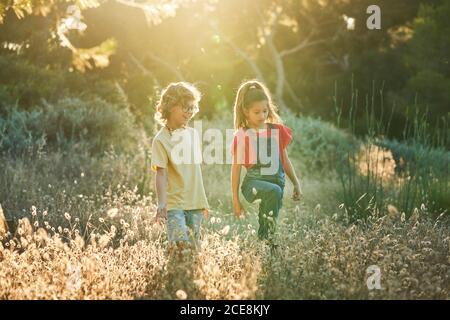 Niño de diez años y amigas caminando por el campo Un soleado día de verano en camisetas y pantalones vaqueros