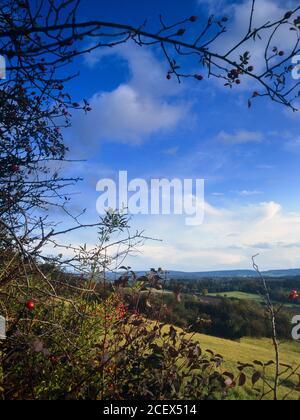 La vista desde Newlands Corner en las colinas de Surrey, Surrey, Inglaterra, Reino Unido