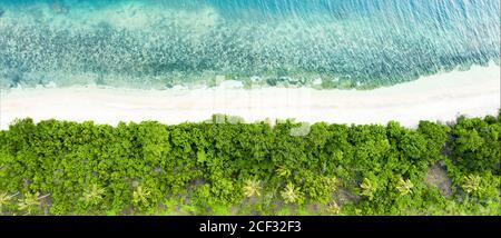 Vista desde arriba, impresionante vista aérea de una costa verde con palmeras de coco y una hermosa playa de arena blanca bañada por una turquesa.