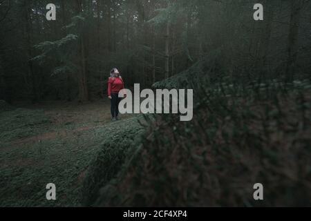 Mujer viajera con chaqueta caliente caminando por el bosque mientras visitaba Parque Forestal Tollymore en Irlanda del Norte en el día de la primavera