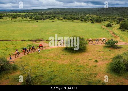 Safari en camello en Sosian Ranch, condado de Laikipia, Kenia