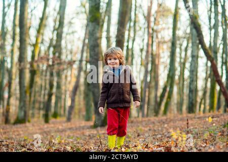Niño en hojas en ropa de otoño. Niño feliz divertirse en el parque de otoño en un día cálido. Foto de stock