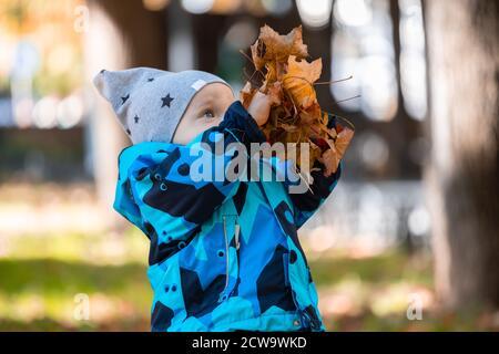 Un niño pequeño jugando con coloridas hojas caídas en el parque en otoño.