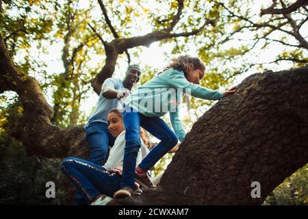 Padre e hijas trepando el árbol