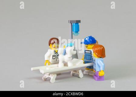 Minifigure de veterinario que examina a Poodle francés blanco enfermo en una cama en la clínica con sus propietarios vigilándolo y preocupado por su salud. Conc