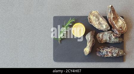 Ostras crudas frescas cerradas en una pizarra con una rodaja de limón y romero en una mesa gris, vista superior con espacio para copias