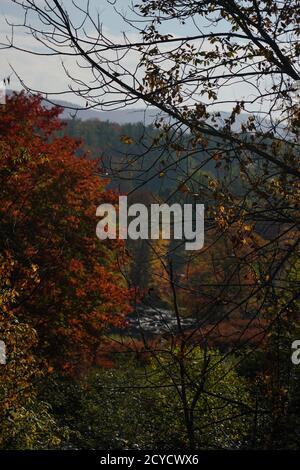 Colores de otoño en Vermont