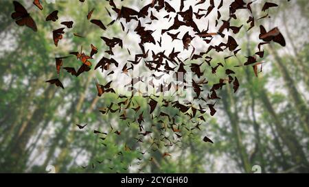 Grupo de mariposas monarca, Danaus plexippus enjambre volando a través de un bosque