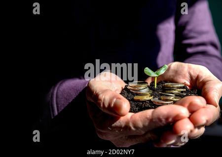 Hombre manos con brotar en palmeras.ahorrar dinero para el crecimiento de negocios y el futuro concepto.plántulas que crecen en manos. Idea de gastar tiempo ahorrar dinero