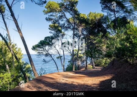 Senderismo en Volta des General, paraje Natural de la Sierra de la Tramuntana, Banyalbufar, Mallorca, Islas Baleares, España