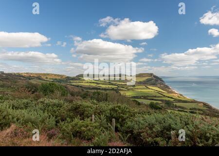 Foto del paisaje de la montaña Golden Cap en la costa Jurásica En Dorset