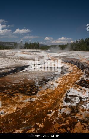 Esterillas bacterianas, Cuenca del Geyser Superior, Parque Nacional Yellowstone, Wyoming, EE.UU