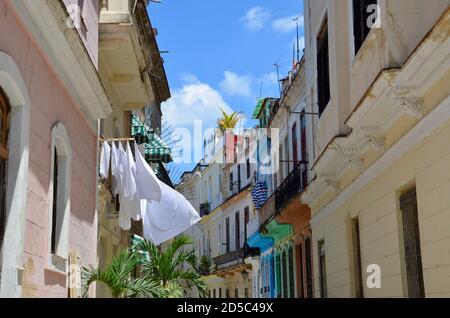 Casas coloniales multicolores en la Habana, Cuba, ropa blanca recién lavada en el tendedero, palmeras, fondo azul del cielo