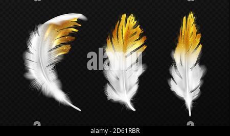 Plumas blancas con brillos de oro en los bordes, plumaje de pájaros o hackles con chispas de oro, estilo boho elementos de diseño de moda aislados sobre fondo negro, ilustración vectorial 3d realista, conjunto de iconos Foto de stock