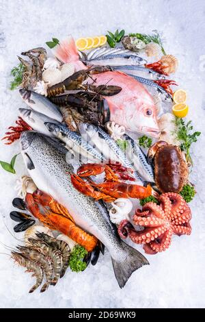 Vista superior variedad de mariscos frescos de lujo, salmón langosta caballa cangrejo langostino pulpo de langostino mejillón pargo rojo y cangrejo de piedra, sobre fondo de hielo