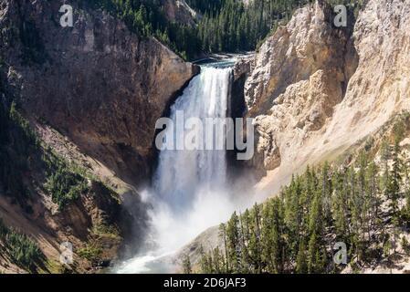 Cataratas inferiores del río Yellowstone y el Gran Cañón, Parque Nacional Yellowstone, Wyoming, Estados Unidos