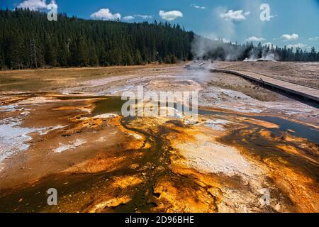 Colchoneta bacteriana, Cuenca del Geyser Superior, Parque Nacional Yellowstone, Wyoming, EE.UU.