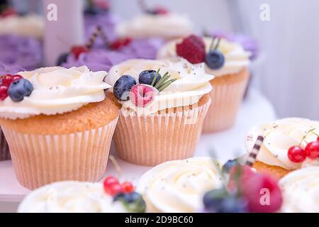 Arándanos y frambuesa en un cupcake de vacaciones con crema blanca. Un conjunto de diferentes y deliciosos cupcakes.