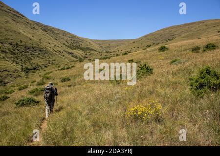 Un excursionista solitario caminando por las montañas cubiertas de hierba del Parque Nacional Golden Gate Highlands, en Sudáfrica, en un claro y soleado día de otoño