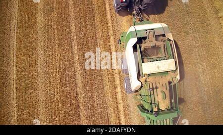 Vista aérea de la cosechadora de producción de heno, máquina agrícola, cosecha de campos de trigo Foto de stock