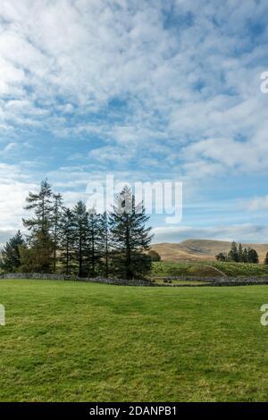 Paisaje del Reino Unido: Vistas Cumbria de tierras de cultivo en Ravenstonedale hacia las montañas Howgills, Cumbria