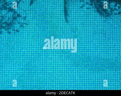 Fondo de piscina azul. Piscina fondo fondo con azulejos cuadrados de mosaico azul con sombra de árbol en la superficie de agua clara, vista desde arriba.