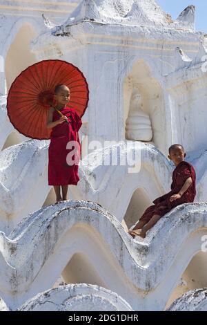 Jóvenes monjes budistas novatos, uno de ellos en la Pagoda de Myatheindan (también conocida como Pagoda de Hsinbyume), Mingun, Myanmar (Birmania), Asia en febrero