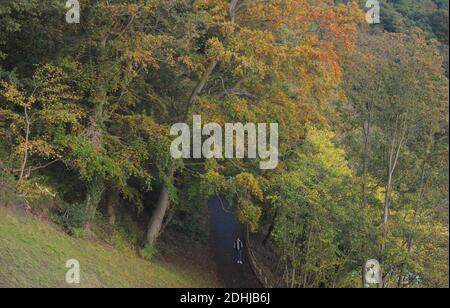 Color otoñal en el bosque de Pelaw a orillas del río Wear en la ciudad de Durham. Foto tomada el 16 de octubre de 2020