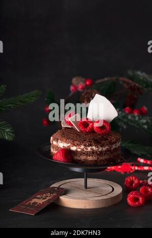 sponge cake three chocolates in a New Year's holiday decoration with raspberries. on dark background