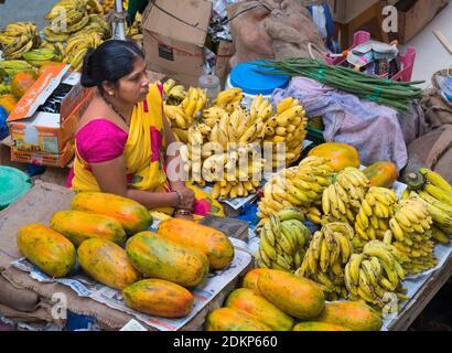 Mercado Municipal India Goa Panjim